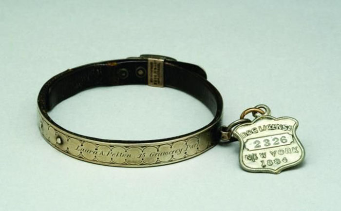 Металлический ошейник с гравировкой, Англия, XVIII в. На нем указано имя собаки, а также дата и место ее регистрации: 1884 год, Нью-Йорк. /Фото:opa.kg